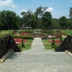 The sunken garden