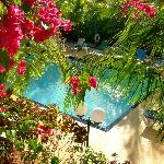 Photo of Caribbean Paradise Inn Providenciales