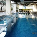 Swimming Pool Amenity