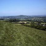 Top of Melbury Downs - The Paddocks B&B