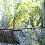 relaxing by the water in THE hammock....ah