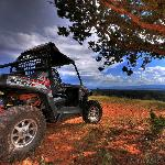 Sedona ATV & Buggy Rental