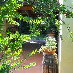 Photo de Villa Bellaria B&B