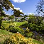 Hill Farm Holiday Cottage grounds with ponds and extensive lawns