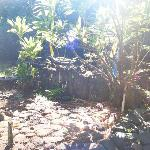 Historic Ceremonial site
