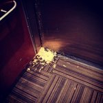 Vomit in the elevator