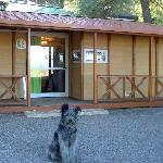 Photo de Camping-Bungalows Altomira