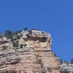 the look out from above the bright angel trail