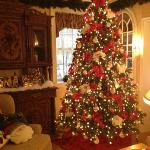 Xmas tree in the great room