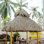 the wifi-palapa