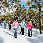 Book a snow shoe tour during Winter