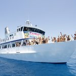 Compass Cruises