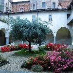 Blooms in Hotel Cloister -  Hotel San Giovanni - Saluzzo - May 1, 2012