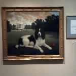 Presidential Painting of George H. W. Bush's Dog