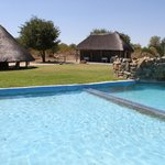 Our swimming pool and pool bar