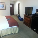 Foto van Holiday Inn Express Hotel & Suites Dyersburg