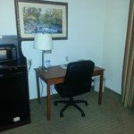 Φωτογραφία: Holiday Inn Express Hotel & Suites Dyersburg