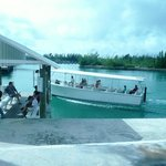 Taino Beach Ferry