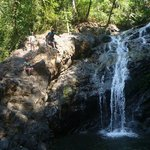 Goa Jungle Adventure Day Tours
