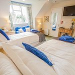 Bed and breakfast in Kings Lynn - Executive Twin room