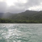 Cape Tribulation Sanct