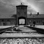 Auschwitz Day Tour