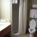 Photo de Holiday Inn Express Hotel & Suites Lansing-Okemos (MSU Area)