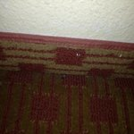 Photo de Extended Stay America - Detroit - Southfield - Northwestern Hwy.