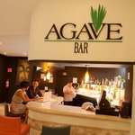  Agave Bar