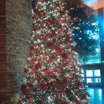  One of a dozen decorated trees in the casino/resort