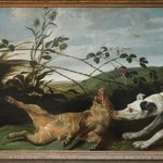 Greyhound Catching a Young Wild Boar - Frans Snyders or Snijders - 1630 - Museum voor Schone Kun