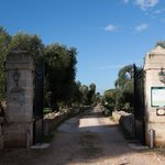 Photo of Masseria Brancati