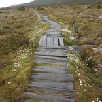  Boardwalk on the way to Ladies Tarn