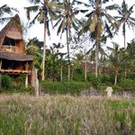 Bamboo Village Le Sabot Ubud
