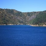  Along the sounds coming into Picton.