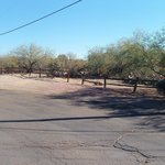 Foto de Super 8 Wickenburg