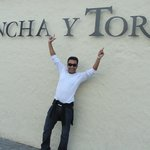 Concha y Toro Winery
