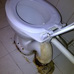  toilet seat-&quot;pathetic&quot;