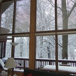  View from great room, Treetop