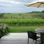 Foto de Takatu Lodge & Vineyard