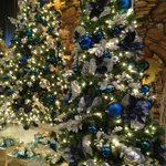  Not crazy about blue and silver ornaments; but pretty none-the-less