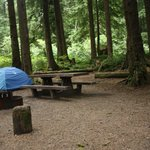 Our Mora Campground campsite