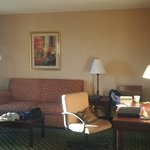 Φωτογραφία: Hampton Inn & Suites Hopkinsville
