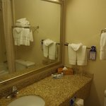 BEST WESTERN PLUS Chicago Hillside resmi