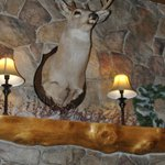  This fellow presides over the Loon Lodge living room.