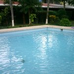  Pool &amp; garden