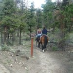 Going up the Colorado Trail