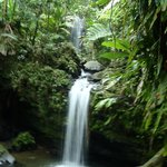 Natural Wonders PR - Private Tours