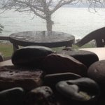  Room with a view - rocks collected from walk frame the tree outside and ocean.