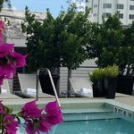 Bilde fra Sanctuary South Beach